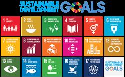 logo goals